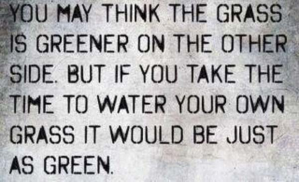Day 74: the grass doesn't always have to be greener.